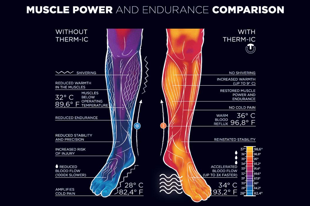 feet thermoregulation