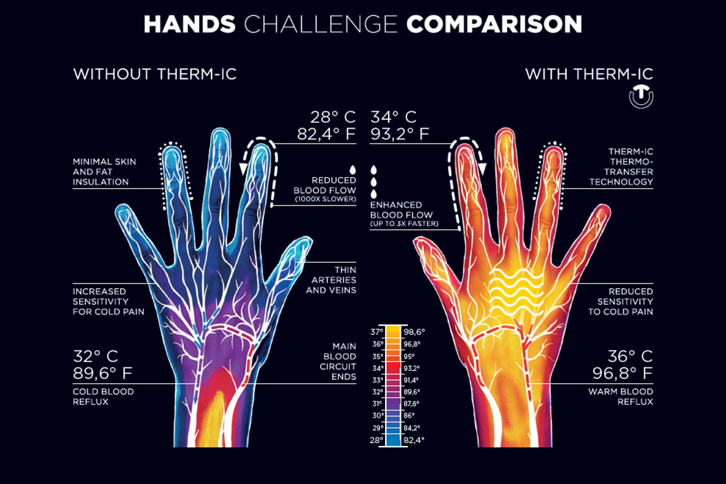 hand thermoregulation